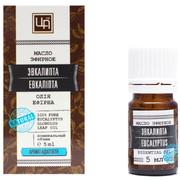 Эвкалипт эфирное масло