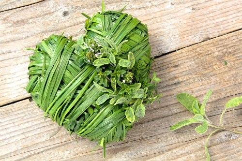 Какие травы при сердечных заболеваниях