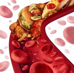 ЛипоТаб для нормализации холестерина