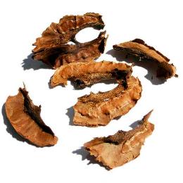 настойка перегородок грецкого ореха