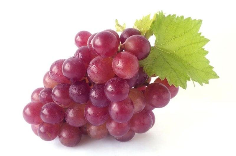 Виноградная косточка масло